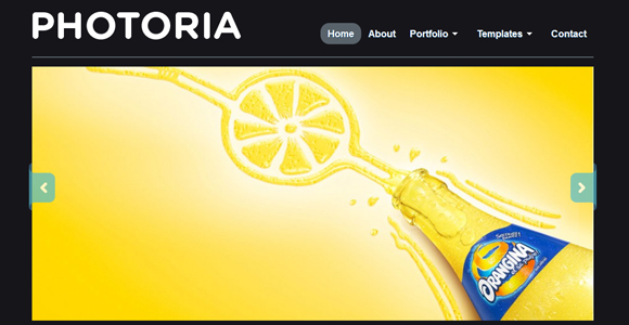 WordPress-Free-Theme-photoria